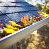 fall_leaves_buildup_in_home_gutters
